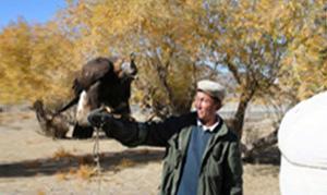 Mongolei: Das goldene Adlerfestival