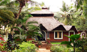 Indien: Dr. Franklin´s Panchakarma Ayurveda Institute