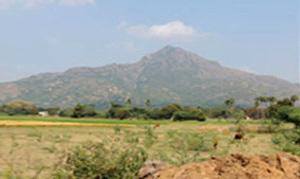 Indien: Arunachala Pilgerreise