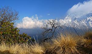 Nepal: Yoga, Meditation und Trekking