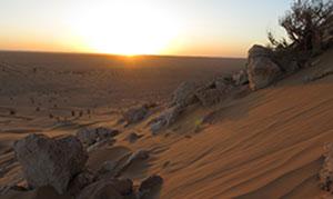 Tunesien: 40 Tage Transformation in der Wüste